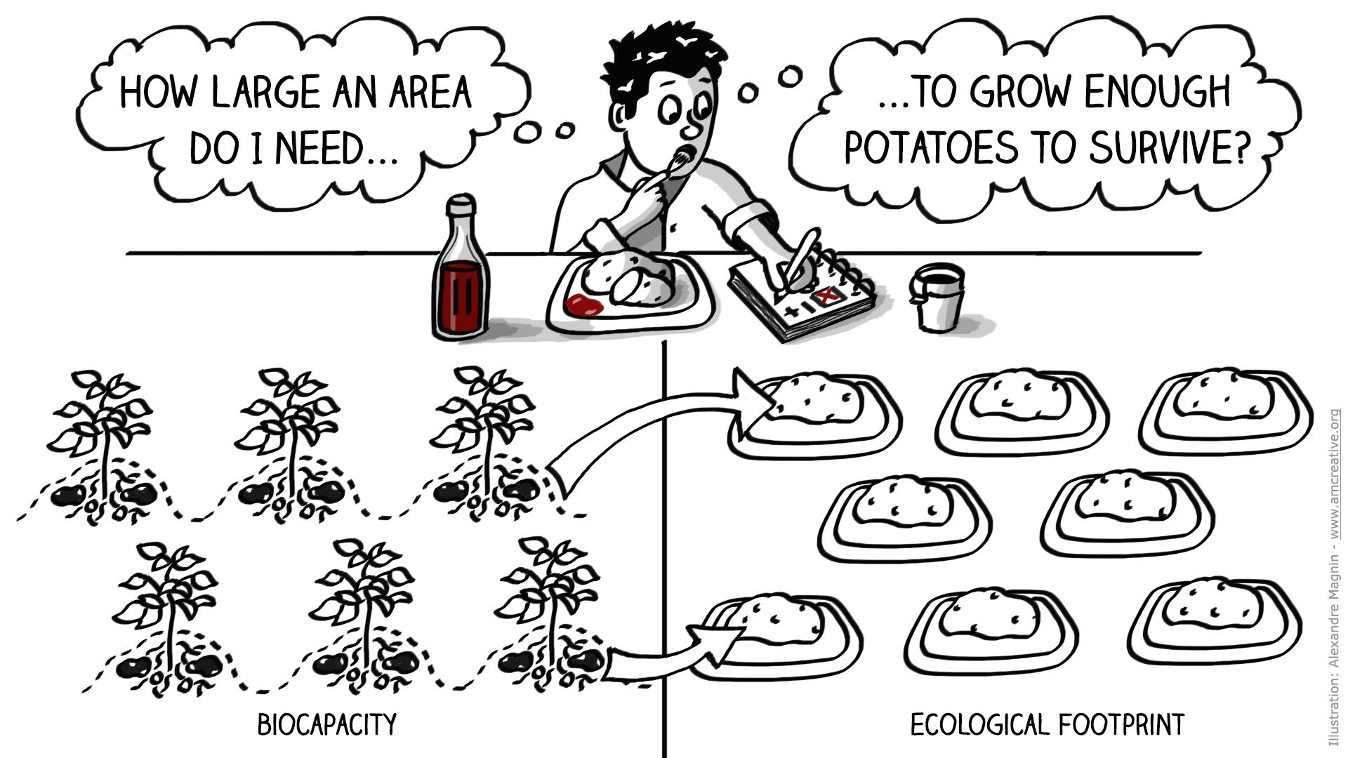 Potatoes-Martian-Movie